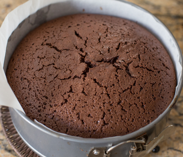 Basic chocolate sponge cake recipe for Chocolate sponge ingredients