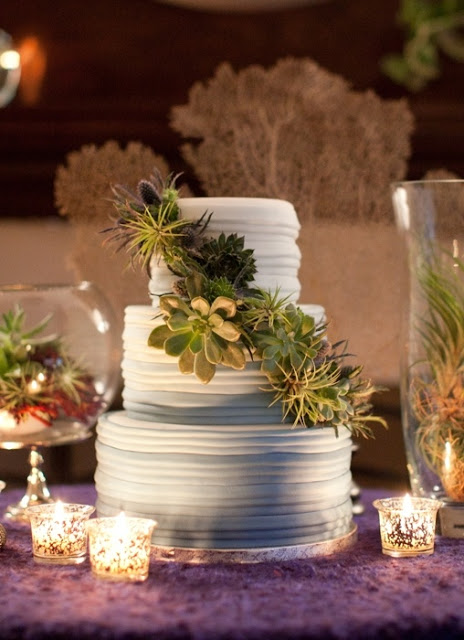 cake decorated with succulents 4 Copia