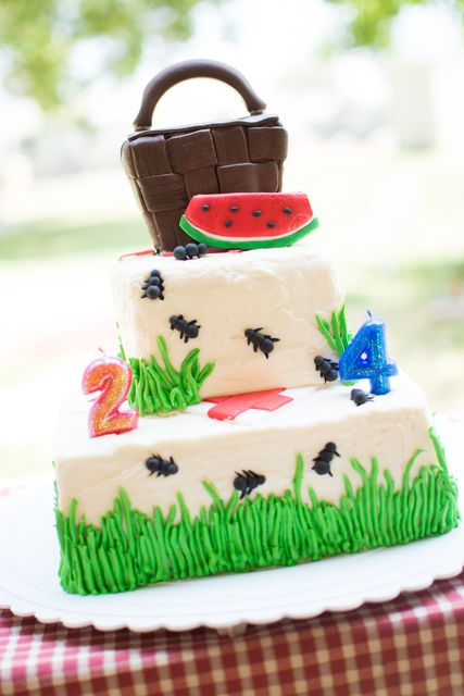 picnic party cakes ideas 11